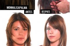 290-EXTENSIONES-FIJAS-CON-ANILLAS-MONNA-LISA-PALMA