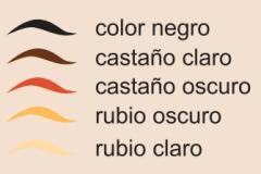 color_cejas