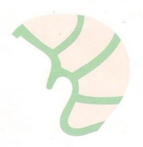 Dermafix